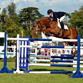 Blenheim.high.jump.2.jpg